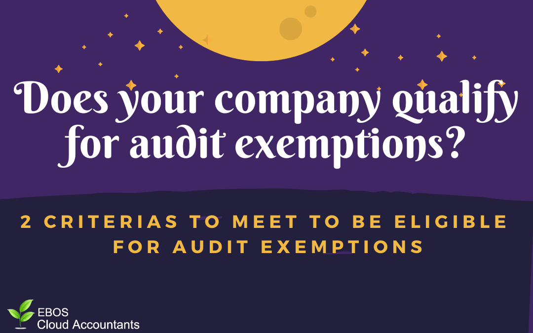 Does your company qualify for audit exemption?